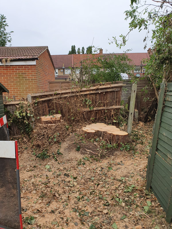 Complete Tree Removal in Greenford
