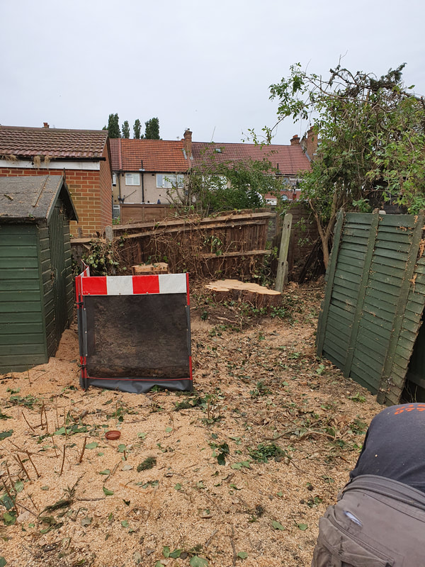 Tree Stump Removal in Greenford
